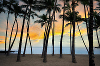 Sunrise at A Beach (Anaehoomola Bay) with palm trees and beach. Hawaii, The Big island, ocean,oceans,oceanic,sea,seas,seascape,<br /> seascapes,beach,beaches,coast,surf,<br /> coastline,coastlines,coast line,coast lines,coastal,shore,shores,shoreline,shorelines,<br /> shore line,shore lines,beachshore,seashore,<br /> sea shore,body of water,seaside,waterfront,coastal region<br /> palm trees,sandy beach