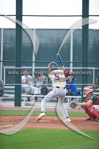 Matthew Corlew (5) of FLVS High School in Lake Worth, Florida during the Under Armour All-American Pre-Season Tournament presented by Baseball Factory on January 14, 2017 at Sloan Park in Mesa, Arizona.  (Zac Lucy/Mike Janes Photography)