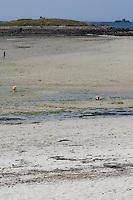 Strandabschnitt bei Ebbe und bei Flut, Gezeiten, Niedrigwasser, Hochwasser, Tide, Tiden, Tidenhub, Bildserie mit unterschiedlich weit abgelaufenem bzw. aufgelaufenem Wasser, Strand, Meer, Watt, Küste, Meeresküste, Atlantik, Atlantischer Ozean, Frankreich, Bretagne, Beach segment at low tide and at high tide, tides, tidal range, Series with differently far expired or accumulated water, beach, sea, coast, seaside, Atlantic, Atlantic Ocean, France, Brittany