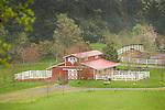 Orcus Island. Horse barn.
