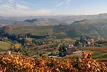 Italien, Piemont, Region Langhe, bei Barolo: Weinberge, malerische Herbstlandschaft | Italy, Piedmont, Region Langhe, near Barolo: vineyards, picturesque autumn landscape