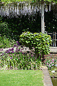 Wisteria-clad pergola and alliums by rectangular pond, Tidebrook Manor, East Sussex, early June.