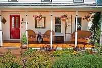 Annual garden of marigolds, Dusty miller, celosia, dahlia, house porch, hanging plants, red door