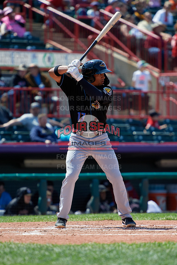 Akron RubberDucks Jorma Rodriguez (17) at bat during an Eastern League game against the Erie SeaWolves on June 2, 2019 at UPMC Park in Erie, Pennsylvania.  Erie defeated Akron 8-5 in eleven innings of the second game of a doubleheader.  (Mike Janes/Four Seam Images)