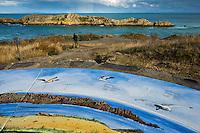 Europe/France/Bretagne/35/Ille et Vilaine/Côte d'Emeraude/Cancale: Pointe du Grouin - la Table d'Orientation   // France, Ille et Vilaine, cote d'emeraude (Emerald Coast), Cancale,The Pointe du Grouin