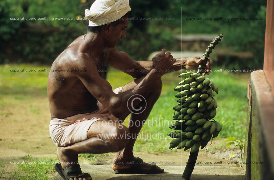 INDIA Karnataka, farm near Mangalore, farmer with harvested banana / INDIEN, Farm bei Mangalore, Bauer mit geernteten Bananen