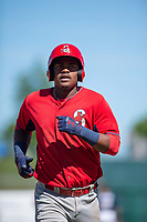 Springfield Cardinals infielder Elehuris Montero (43) jogs to third after hitting a home run on May 19, 2019, at Arvest Ballpark in Springdale, Arkansas. (Jason Ivester/Four Seam Images)