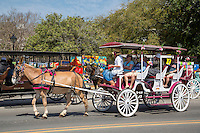 French Quarter, New Orleans, Louisiana.  Mule-drawn Carriage Passing by Jackson Square.