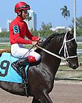 July 19, 2015: Scenes from Gulfstream Park in Hallandale Beach, FL.  #9 Candy Jam (KY) with jockey John Castillo takes second.  Liz Lamont/ESW/CSM