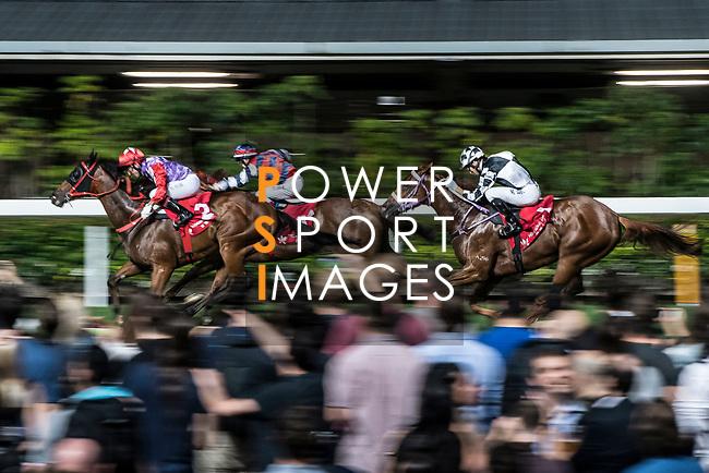 Jockey #2 Olivier Doleuze riding Perpetual Joyance (L) during the race 6 of Hong Kong Racing at Happy Valley Race Course on November 29, 2017 in Hong Kong, Hong Kong. Photo by Marcio Rodrigo Machado / Power Sport Images
