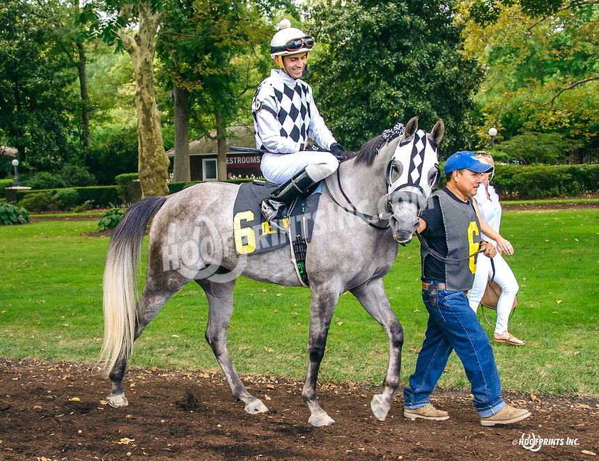 Quick and Rich in the paddock before The Arabian Classic Handicap at Delaware Park on 9/2/19