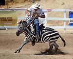 Virginia City International Camel Races 2013