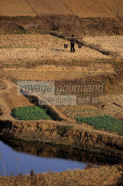 Asie/Chine/Jiangsu/Env Nankin: La campagne - Paysan  avec sa palanche sur le dos portant de l'eau pour arroser son champ <br /> PHOTO D'ARCHIVES // ARCHIVAL IMAGES<br /> CHINE 1990
