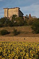 Europe/France/Midi-Pyrénées/32/Gers/Lavardens: Château de Lavardens