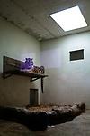Tinka the tigress has been at Servion Zoo since 2004. Due to a coronavirus pandemic (COVID-19), Servion Zoo is closed to the public. Servion, Switzerland, April 30, 2020.<br /> Tinka la tigresse est au zoo de Servion depuis 2004. Pour cause de pandemie de coronavirus(COVID-19), le zoo de Servion est ferme au public. Servion, Suisse, le 30 avril 2020.