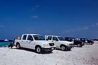 Rental cars on the beach, Netherland Antilles, Bonaire, Caribbean Sea, Atlantic