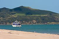Boat Resting in Hokianga Harbour, north island, New Zealand.