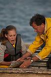 Shad recovery program, Jim Cummins, Potomac River