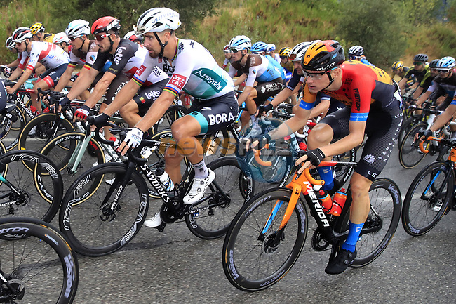 The peloton including Peter Sagan (SVK) Bora-Hansgrohe and Matej Mohoric (SLO) Bahrain-McLaren during Stage 1 of Tour de France 2020, running 156km from Nice Moyen Pays to Nice, France. 29th August 2020.<br /> Picture: Bora-Hansgrohe/BettiniPhoto | Cyclefile<br /> All photos usage must carry mandatory copyright credit (© Cyclefile | Bora-Hansgrohe/BettiniPhoto)