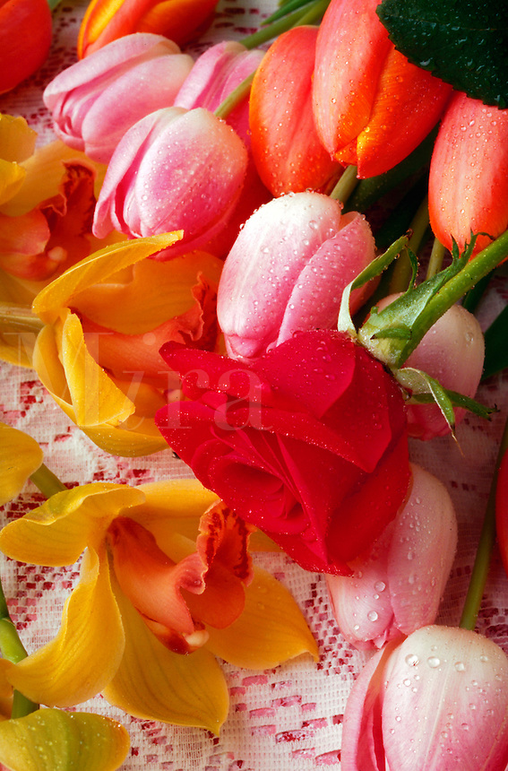 Freshly cut flowers, rose, tulips and orchids with water drops on lace cloth