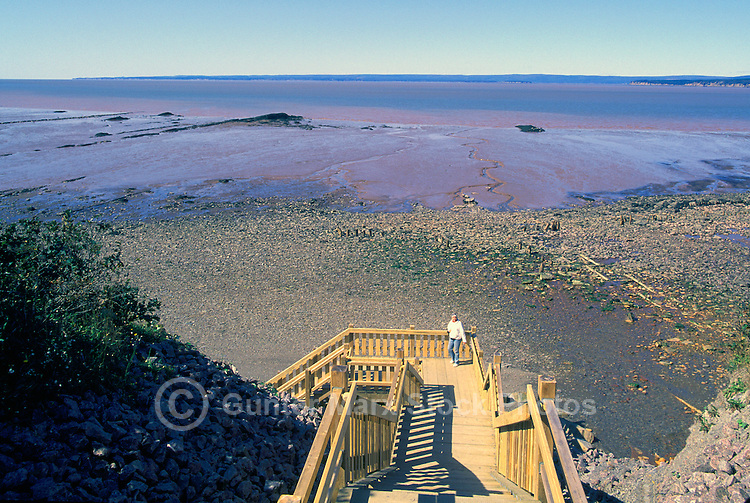 "UNESCO World Heritage Site - Fossil Beach and Bay of Fundy Tidal Mud Flats at ""Joggins Fossil Cliffs"", Joggins, NS, Nova Scotia, Canada - Fundy Shore & Annapolis Valley Region (Model Released)"