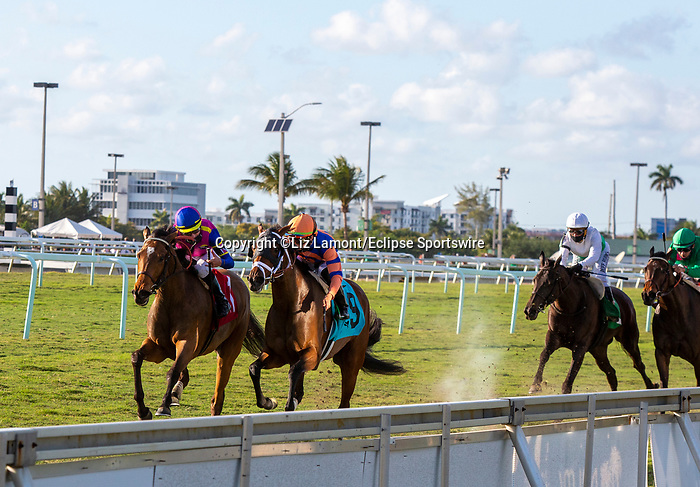 March 27, 2021: War Like Goddess #1, ridden by jockey Julien Leparoux, outduels #9 Always Shopping and jockey Irad Ortiz Jr. to win the Orchid Stakes (Grade 3) on Florida Derby Day at Gulfstream Park in Hallandale Beach, Florida. Liz Lamont/Eclipse Sportswire/CSM