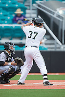 G.K. Young (37) of the Coastal Carolina Chanticleers at bat against the Bryant Bulldogs at Springs Brooks Stadium on March 13, 2015 in Charlotte, North Carolina.  The Chanticleers defeated the Bulldogs 7-2.  (Brian Westerholt/Four Seam Images)