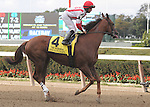 Zero Rate Policy, ridden by Jose Lezcano, runs in the Vosburgh Invitational Stakes (GI) at Belmont Park in Elmont, New York on September 29, 2012.  (Bob Mayberger/Eclipse Sportswire)