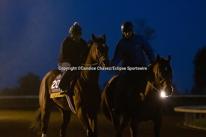 Horologist, trained by trainer William I. Mott, exercises in preparation for the Breeders' Cup Distaff at Keeneland Racetrack in Lexington, Kentucky on November 4, 2020.