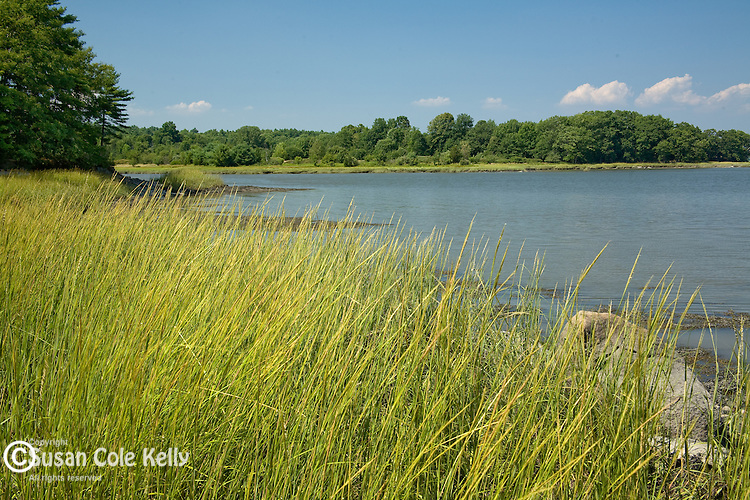 New Hampshire's largest tidal estuary is Great Bay NWR. Adams Point, Durham, Seacoast Region, NH