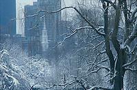 Winter, snow, Public Garden, Boston, MA