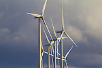 Environment - Energy and Sustainability