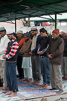 Men at Friday Prayers, Madrasa Imdadul Uloom, Dehradun, India.