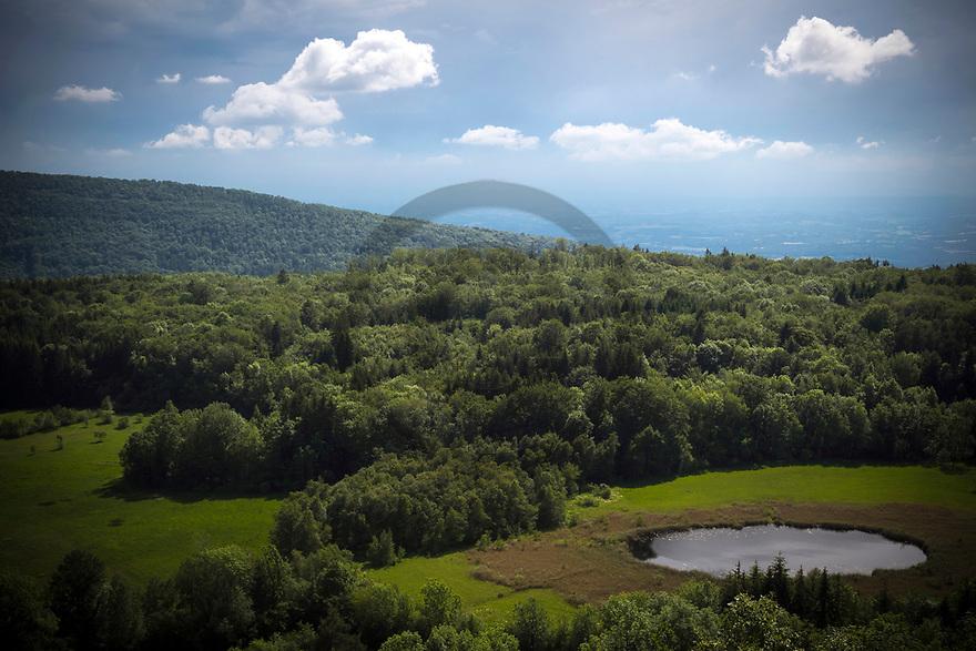 20/06/19 - CERIN - AIN - FRANCE - Reserve naturelle de la Tourbiere de Cerin - Photo Jerome CHABANNE