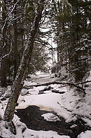 Looking down the river at Long Lake park during a snow storm