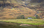 Glencoe, Scotland: Solitary house in the Scotish Highlands along the river Coe