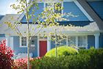 Blue House, Red Door, Trees