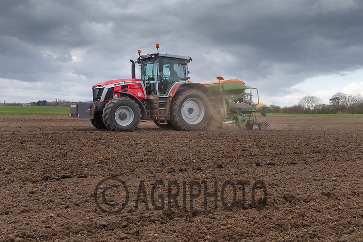 25-3-2021 Drilling Spring Wheat in Lincolnshire <br /> ©Tim Scrivener Photographer 07850 303986<br />      ....Covering Agriculture In The UK....