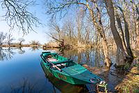 Grünes Motorboot auf der Havel bei Parey, Havelaue, Havelland, Brandenburg, Deutschland
