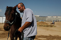 "Bonds form between inmates and horses when mustangs are gentled at the Warm Springs Correctional Center, a minimum security prison.  <br /> The horses and inmates learn life lessons.  Horses learn from repetition and adjust to new things. As Hank says, ""It's about as exciting as watching paint dry.  We bore them into submission."""