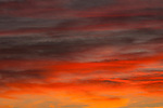 Stratocumulus clouds at sunset