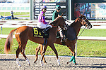 NEW ORLEANS, LA - FEBRUARY 25: Wicked Lick #6, ridden by Brian Joseph Hernandez, Jr.  Rachel Alexandra Stakes, on Risen Star Stakes Day at Fair Grounds Race Course on February 25, 2017 in New Orleans, Louisiana. (Photo by Jarrod Monaret/Eclipse Sportswire/Getty Images)