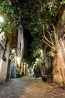 Trees in Orvieto Town Walk