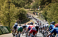 Women's Elite Road Race from Imola to Imola (143km)<br /> <br /> 87th UCI Road World Championships 2020 - ITT (WC)<br /> <br /> ©kramon