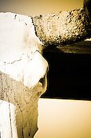 Old Tucson Skull - Arizona - Old Tucson Movie Studio