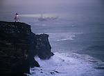 Lighthouse and ship off Taiaroa Head on the Otago Peninsula. The Otago Region of New Zealand.
