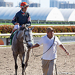 January 16, 2016:  Lori's Store with John Velazquez up winning the Sunshine Millions Filly and Mare Turf Stakes at Gulfstream Park, Hallandale Beach (FL). Arron Haggart/ESW/CSM