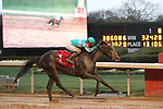 HOT SPRINGS, AR - FEBRUARY 19: My Boy Jack #1, with jockey Kent Desormeaux aboard before crossing the finish line in the Southwest Stakes at Oaklawn Park on February 19, 2018 in Hot Springs, Arkansas. (Photo by Justin Manning/Eclipse Sportswire/Getty Images)