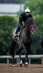 October 23, 2021: Hot Rod Charlie works in preparation for the Breeders' Cup Classic at Santa Anita Park in Arcadia, California on October 23, 2021. Evers/Eclipse Sportswire/CSM