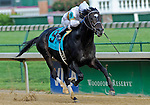 30 May 2009 :  Bold Start with Robbie Albarado (white cap) takes the 21st running of the G3 Aristides at Churchill Downs in Louisville, Kentucky.